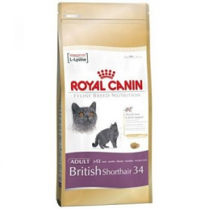 Royal Canin British shortair macskaeledel, 2Kg (100124)