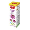 Dr. Herz Dr.Herz Echinacea csepp C-vitaminnal 50 ml