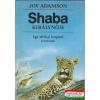 Shaba királynője - egy afrikai leopárd története