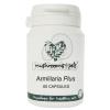 Armillaria Plus (450 mg) 60 db