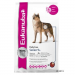 Eukanuba Daily Care Senior Plus - 2 x 12 kg