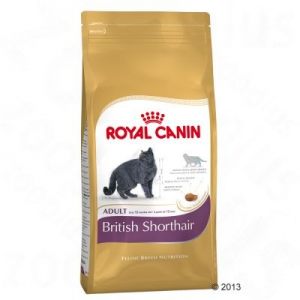 Royal Canin British Shorthair Adult - 4 kg