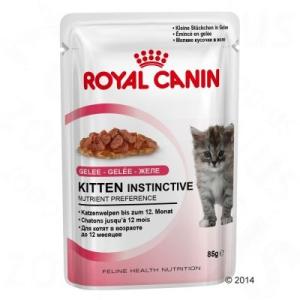 Royal Canin Kitten Instinctive zselében - 24 x 85 g