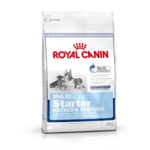 Royal Canin Maxi Starter (15kg)
