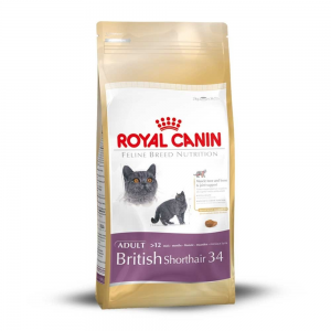 Royal Canin British Shorthair 34 (4kg)