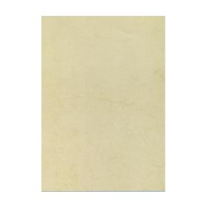 APLI Előnyomott papír, A4, 200 g, APLI, havanna (10lap