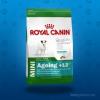 Royal Canin Mini Ageing +12 800 g