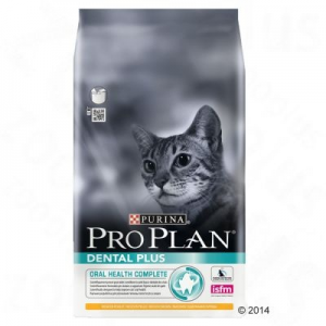 Pro Plan Dental Plus - 1,5 kg