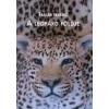 A A leopárd földje