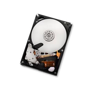 HGST HDD HITACHI Ultrastar A7K2000 1TB 7200RPM 32MB CACHE SATA-II