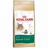 Royal Canin Maine Coon macskaeledel, 10 Kg (3005503)
