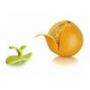 T Kitchen T's Kitchen narancshámozó
