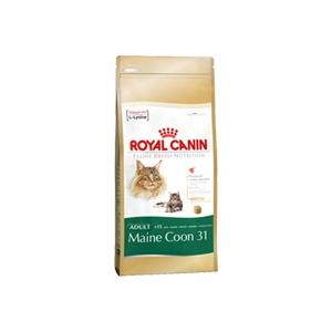 Royal Canin Mainecoon macskatáp 4 kg