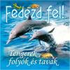 - TENGEREK, FOLYÓK ÉS TAVAK - FEDEZD FEL!