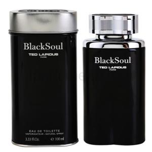 Ted Lapidus Black Soul EDT 100 ml