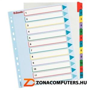 Regiszter, laminált karton, A4 Maxi, 1-12, újraírható, ESSELTE (E100209)