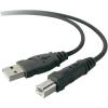 Belkin USB kábel, A/B, 1,8 m, fekete, Bulk, Belkin