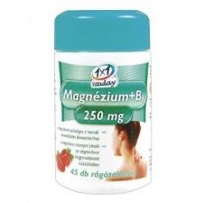 1x1 Vitaday Magnézium+B6 Vitamin 250 Mg Rágótabletta 45 db vitamin