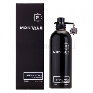 Montale Paris Steam Aoud EDP 100 ml