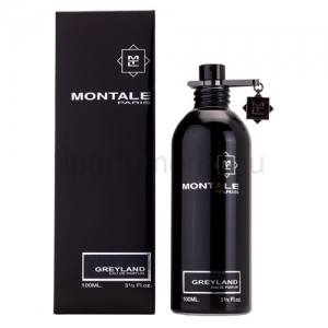 Montale Paris Greyland EDP 100 ml