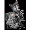 Ezüst - Cicák