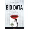 Viktor Mayer-Schönberger, Kenneth Cukier Big Data