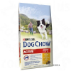Dog Chow Purina Dog Chow Adult Active csirke - 14 kg