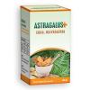 Astragalus+ EGCG, Rezveratrol kapszula - 100db