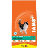 IAMS Cat Adult Hairball Chicken 300G