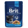 Brit Premium Cat Chicken Chunks for Kitten alutasakos 100 g