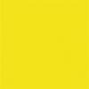 . Fotókarton, 2 oldalas, 50x70 cm, citromsárga