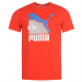 Puma QTT Cat Graph Tee fér.