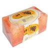 NATURE of Agiva Sweet Papaya Szappanos fürdőszivacs 55 g