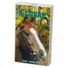 Kártya: A lovak