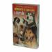 Kártya: A kutyák