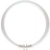 Philips MASTER TL5 Circular 22W/840 T5 [16mm] fehér körfénycső 2GX13, C-t5