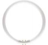 Philips MASTER TL5 Circular 40W/840 T5 [16mm] fehér körfénycső 2GX13, C-t5 izzó
