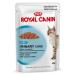 Royal Canin Urinary Care szószban - 12 x 85 g