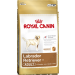 Royal Canin Breed  Health Nutrition -  Labrador Adult 12Kg