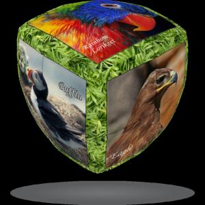 V-Cube V-CubeTM 2x2 versenykocka, lekerekített, Madarak