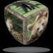 V-Cube V-CubeTM 2x2 versenykocka, lekerekített, Vadállatok