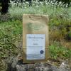 Egészségtündér Hibiszkuszvirág teafű 100 g