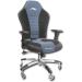 Akracing Octane Gaming Chair