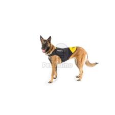 Julius-K9 Neoprén IDC kutyaruha Baby 2 (16DC-IDC-B2) nyakörv, póráz, hám kutyáknak