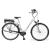 BadBike BadCat Balinese kerékpár (2016)