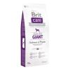 Brit Care Grain-free Giant Salmon & Potato 24 kg (2x12kg)