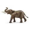 SC 14762 Afrikai elefántbika