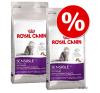 Royal Canin gazdaságos dupla csomag - Hair & Skin 33 (2 x 10 kg) macskaeledel