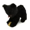 Fekete szerencse macska
