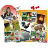 Akros BINGO: állatok és természet